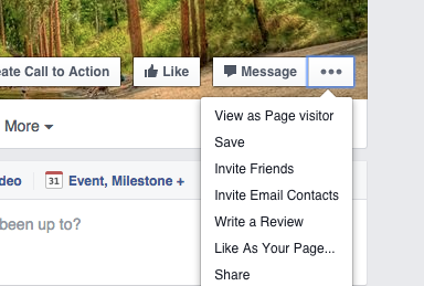 Screen shot of the 3 dot button on Facebook Business Page