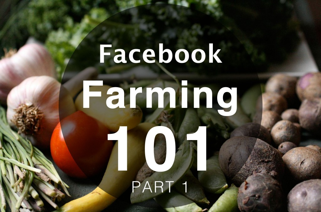 Facebook Farming 101 For Realtors